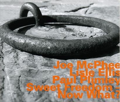 Ce que vous écoutez  là tout de suite - Page 6 JoeMcPhee_Sweet.Freedom