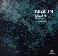 NIACIN (Billy Sheehan – John Novello – Dennis Chambers) : « Krush » -  voir en grand cette image