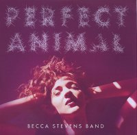 Becca STEVENS Band : « Perfect Animal » -  voir en grand cette image