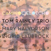 Tom Rainey Trio : « Camino Cielo Echo » -  voir en grand cette image