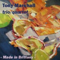 Tony Marshall trio/quartet - « Made in Brittany » -  voir en grand cette image