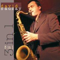 David Sauzay - « 3 in 1 » -  voir en grand cette image